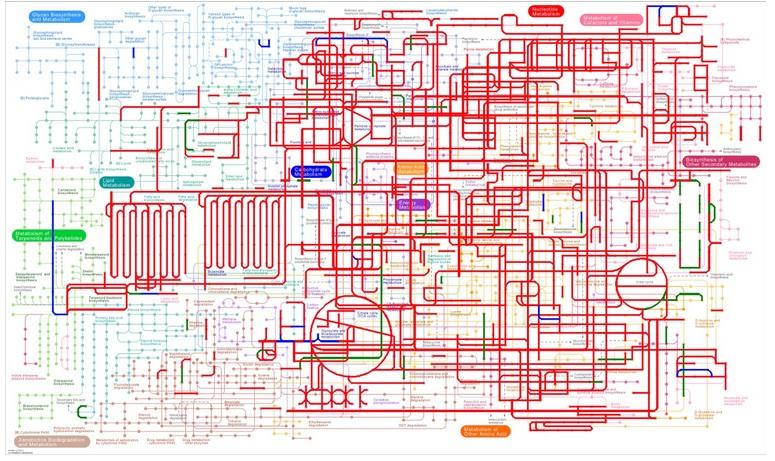 电路 电路图 电子 户型 户型图 平面图 原理图 775_461