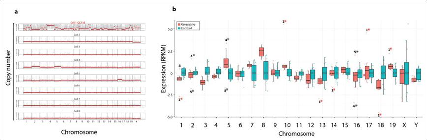 单细胞g&t-seq研究胚胎细胞基因组结构变异与基因表达的相互作用.png