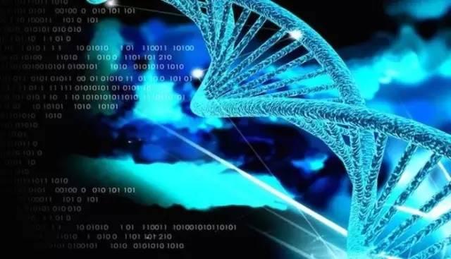 麻省总医院(MGH)和Broad研究所的人员领导的一个国际团队开发了最大规模的蛋白质-蛋白质互作网络数据库,称为InWeb_InBioMap(InWeb_IM),这个资源可以阐明多种疾病相关基因是如何引起疾病发生和发展的。相关文章目前已经在《Nature Methods》杂志上在线发表。  文章共同通讯作者、该项目的负责人、MGH外科和Broad研究所斯坦利精神病研究中心的Kasper Lage博士表示,现代遗传技术让我们可以对癌症或精神疾病患者的基因组进行测序,但是要理解致病基因变异是如何影响细胞系统的